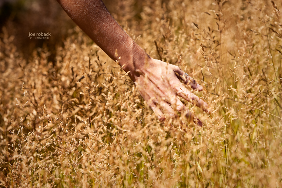High Grass I
